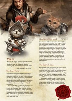 Tagged with dnd, homebrew, dungeons and dragons, Shared by ImJasonWrong. D&D Felis Race Homebrew Dungeons And Dragons Races, Dungeons And Dragons Classes, Dnd Dragons, Dungeons And Dragons Characters, Dungeons And Dragons Homebrew, Dnd Characters, Fantasy Characters, Character Concept, Character Art
