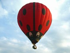 Hot Air Balloon Rides Nottinghamshire, Leicestershire, Lincolnshire, Derbyshire | Ladybird Balloons