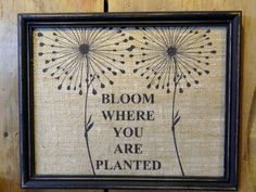 Bloom Were You Are Planted   -  Burlap Print Wall Decor - XL Frame - Customized Wedding Gift