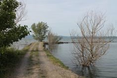 Lago Trasimeno, Umbria, Italia