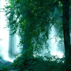 Gorman falls - Bend, Texas The Most Beautiful Places in Texas You Didn't Know Existed