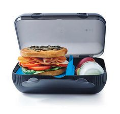 Perfectly sized for efficiently storing a well-balanced and nutritious lunch, TupperwareAt Lunch Box is a space saving and practical solution to workers on the go. The At Lunch Box features a divider that stands upright or flat, allowing you to neatly store foods separately, or together.  Also check outSandwich keeper