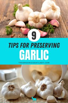 Would you like to cook with your own garlic that you grew on your farm on the homestead? Learn how to roast and preserve garlic, how to make a garlic relish and tons of other amazing ways to keep your garlic all year long. Don't miss these 9 tips for persevering garlic so you can become self-sufficient. Preserving Garlic, Preserves, Homesteading, Roast, Canning, Vegetables, Tips, Food, Preserve