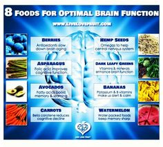 These are the foods, with which you can improve your ability to concentrate and learn.