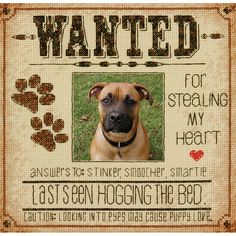 Dog Wanted. - Unknown (cross stitch design)