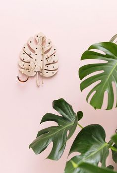 Handmade Monstera Le