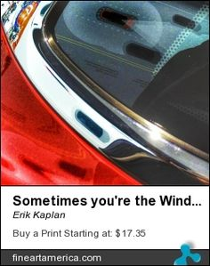 Sometimes You're the Windshield