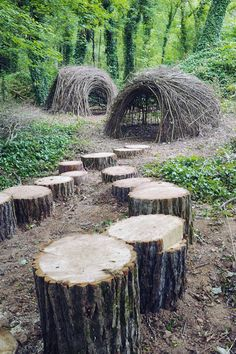 """I love these """"twigloos"""" and fallen tree """"steps"""" at Ijams Nature Center"""
