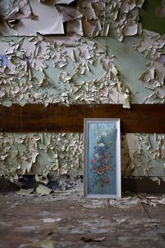 Framed ©2006 opacity.us
