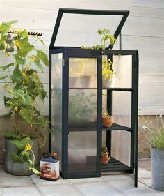 Perfect little greenhouse for the small garden or balcony Miniature Greenhouse, Indoor Greenhouse, Small Greenhouse, Backyard Plan, Backyard Patio, Nelson Garden, Outdoor Spaces, Outdoor Living, Growing Gardens
