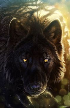 A lord wolf of the Forest. This should really be in a fantasy. Artwork Lobo, Wolf Artwork, Wolf Love, Bad Wolf, Anime Wolf, Wolf Spirit, My Spirit Animal, Beautiful Wolves, Animals Beautiful