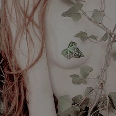 ♡ shadowkssed . Gotham Girls, Holly Black, Little Rose, Lydia Martin, Pretty Roses, Detective Comics, Character Aesthetic, Poison Ivy, Pure Products