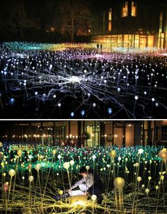 Surreal Light Installation by Bruce Munro