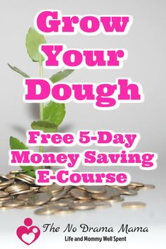 Want to learn to save more money? My free e-course will give your practical tips and ideas to challenge your thinking and change your finances for good. Click and subscribe! Ways To Save Money, Make More Money, Money Tips, Money Saving Tips, Savings Challenge, Money Saving Challenge, Service Projects For Kids, Frugal Living, Frugal Family