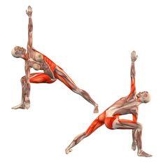 Bikram triangle right - Trikonasana Bikram variation right - Yoga Poses…