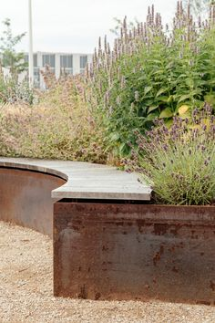 Magneten Sensory Garden by MASU Planning « Landscape Architecture Platform Back Gardens, Outdoor Gardens, Vertical Gardens, Contemporary Landscape, Landscape Design, Area Industrial, Monsaraz, Sensory Garden, Window Boxes