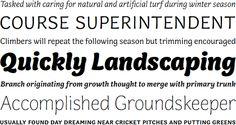Typeface Love: Capucine