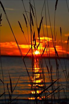 Door County Sunset   Peninsula State Park ~ Photo by kanablep