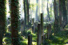 Berlin - Jüdischer Friedhof von Bernd Nasner