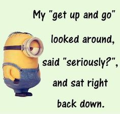 """。◕‿◕   My """"get up and go"""" looked around said """"seriously?"""" and sat right back down."""