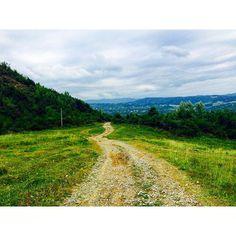 Iconosquare – Instagram webviewer Country Roads, Photography, Instagram, Photograph, Fotografie, Photoshoot, Fotografia