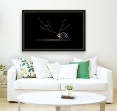 Cerebration Art Sogetsu Ikebana, Traditional Wallpaper, Black Sea, Book Gifts, Adhesive Vinyl, Photo Book, Wall Murals, Sea Shells, This Is Us