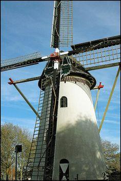 Molen 2005