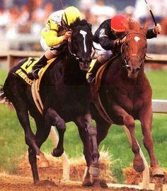 Sunday Silence and <b>Easy</b> <b>Goer</b> | <b>Horse Racing</b> | Pinterest