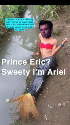 Harry Styles Memes, Harry Styles Baby, Harry Styles Pictures, Funny Profile Pictures, Funny Reaction Pictures, Funny Pictures, One Direction Humor, One Direction Pictures, Stupid Funny Memes