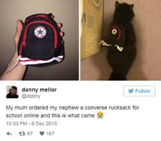 """""""Meine Mutter hat meinem Neffen online einen Converse-Rucksack für die Schule bestelltund das hier haben wir geliefert bekommen."""" Oh man, naja wenigstens kann die Katze ihn jetzt benutzen, für den Neffen ist er wohl zu klein. Da hat wohl jemand beim  Onlinekauf nicht auf die Größe geachtet.   unfassbar.es"""