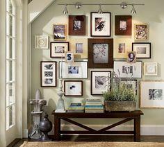 mur de cadres, livres, pot à fleur, plantes, grande fenêtre, murs vert, banc en bois