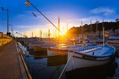 le port de Nice by alain calissi
