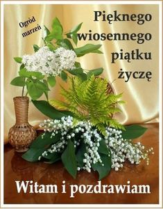 Good Morning, Plants, Pictures, Polish, Buen Dia, Bonjour, Plant, Good Morning Wishes, Planets