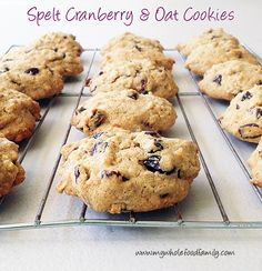 My Spelt, Cranberry and Oat Cookies (Thermomix) Oat Cookies, Galletas Cookies, Healthy Homemade Snacks, Healthy Snacks For Kids, Kids Meals, Family Meals, Crumble Topping, No Sugar Foods, Whole Food Recipes