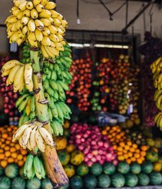 """Vibrant tropical fruit stalls of Sri Lanka ∽⋆✧ @gypsea_lust"""