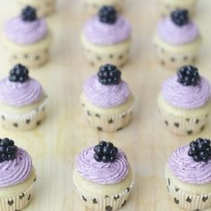 Mini vanilla cupcakes with blackberry frosting