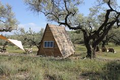 For Rent, A-Frame Cabin, Tiny Pallet House, DIY, Low Cost, Pallet Wood, Backyard, Eco Cabin, Recycle, Recycling, Small Modern Cabin, Back To Basic, Natural Materials, Design, Cabin Life, Rural, Off The Grid, Olive Trees, Finca Poc A Poc, Spain