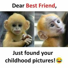 For my freind Best Friend Jokes, Best Friend Quotes Funny, Cute Funny Quotes, Besties Quotes, Bffs, Funny School Jokes, Very Funny Jokes, Crazy Funny Memes, Funny Relatable Memes
