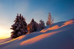 Smell of snow by Janez Tolar on 500px