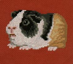 Image Search Results for cross stitch guinea pig patterns Counted Cross Stitch Patterns, Cross Stitch Charts, Cross Stitch Embroidery, Black Spider, Chart Design, Cross Stitch Animals, Perler Beads, Fuse Beads, Guinea Pigs