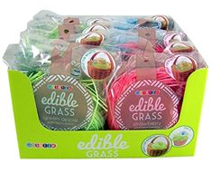 Edible Easter Basket Grass Filler Assorted Flavors Include - Blueberry, Green Apple, and Strawberry Candy Grass - 1 oz Each Shot Bouquet, Edible Grass, Gourmet Recipes, Snack Recipes, 1 Oz, Easter Baskets, Blueberry, Lunch Box, Strawberry