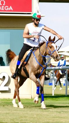 Beautiful Horse Pictures, Beautiful Horses, Dubai, Pakistani Mehndi, Sheikh Mohammed, Prince, Love You Very Much, Victorious, Animals
