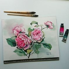 Climbing roses🌹. Video of this painting is on my youtube channel, free feel to check it out 😉#watercolourflowers #watercolorrose