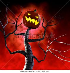 It's almost Halloween! Only 33 days to go!  http://image.shutterstock.com/display_pic_with_logo/2018/2018,1160589820,3/stock-photo-halloween-pumpkin-tree-1981947.jpg