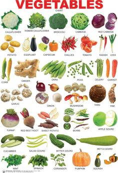 English vocabulary: vegetables and vegetables - Englisch lernen - Opleiding web Food Vocabulary, English Vocabulary Words, Learn English Words, English Writing, English Study, English Grammar, English Idioms, English Tips, English Lessons