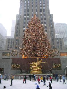Rockefeller Center Christmas Tree - 'Prometheus' -- Rockefeller Center, New York City, New York