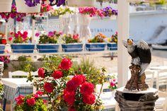 Halkidiki, Sithonia ! Highlights 2014, 1. Mai, Table Decorations, Home Decor, Greece, Decoration Home, Room Decor, Home Interior Design, Dinner Table Decorations