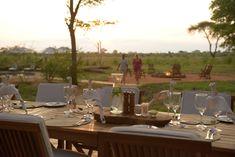 Botswana Lodge Safari and Explorer including Victoria Falls Chobe National Park, National Parks, Elephant Eye, Bird Sightings, Victoria Falls, Game Reserve, Great View, Safari, Highlights