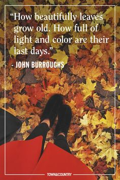 17 of the Best Quotes About Autumn - Herbst Live Quotes For Him, Deep Quotes About Love, I Love You Quotes, Love Yourself Quotes, Inspiring Quotes About Life, Best Quotes, Fall Quotes, Quotes About Autumn, Fall Season Quotes