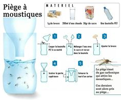 Viral Randomness… Don't spend lots of money on mosquito sprays when you can make this simple and cheap solution. We've discovered this little infographic explaining how to make th… Mosquito Trap, Tips & Tricks, Home Hacks, Clean House, Good To Know, Cleaning Hacks, How To Plan, How To Make, Helpful Hints